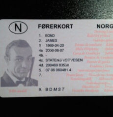 Fake Norwegian id card